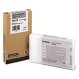Epson UltraChrome K3 Light Light Black Ink (110ml)