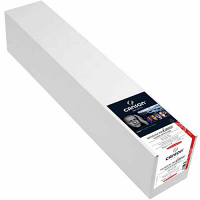 """Canson Infinity Museum Pro Canvas Lustre (385) - 24"""" x 40' Roll"""